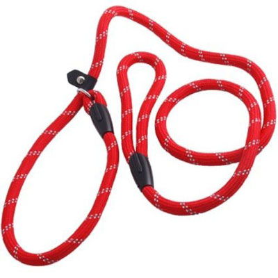 1. KingWinX 15m Long Dog Puppy Pet Training Lead Leash