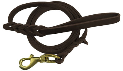 6. Premier 6ft Leather Dog Training Leash. Made from High Quality Leather and is a Great Option for Hunting Dogs or General Obedience in the Backyard