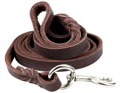 2. ColorPet Leather Dog Leash for Large Dogs, Training Lead, Heavy Duty Brown Leash For Dogs and 6ft Long, Count in inch as 3/4 (Brown)