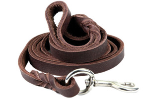 Top 10 Best Dog Training Leashes in 2018 Reviews