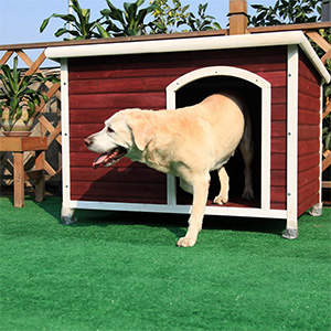 3. Petsfit Dog House