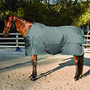 10. Kensington All Around Adjustable