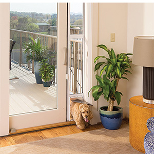 Petsafe 2 Piece Sliding Gl Pet Door