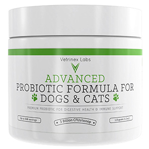 4. Probiotics for Dogs and Cats