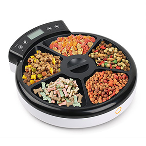 10. TD Design Automatic Pet Feeder