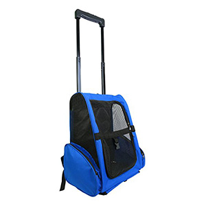 10. Radiant Outdoor Travel Carrier
