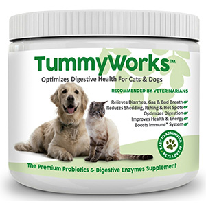 3. TummyWorks Probiotic for Dogs & Cats
