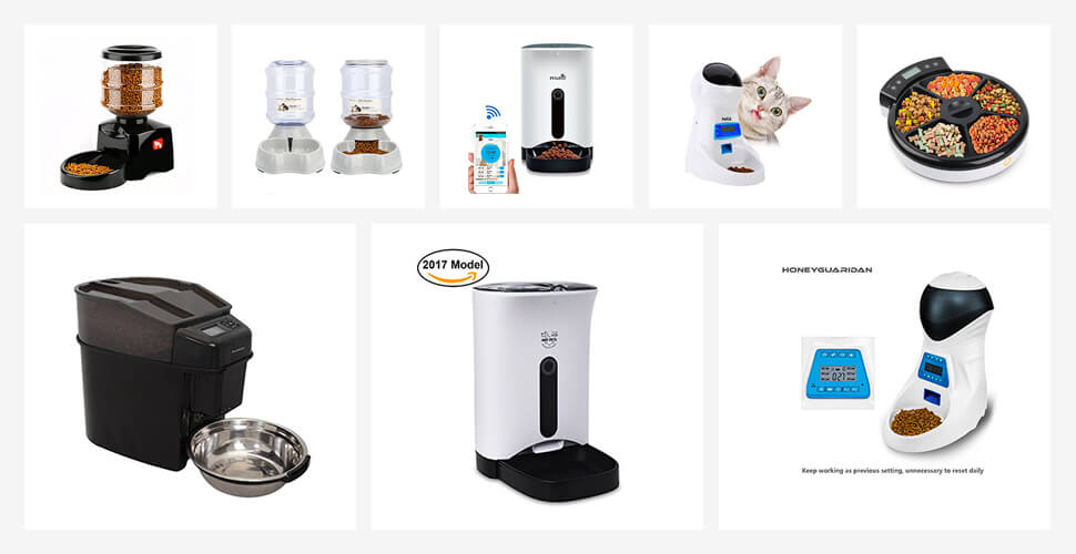 Best Automatic Cat Feeders Reviews