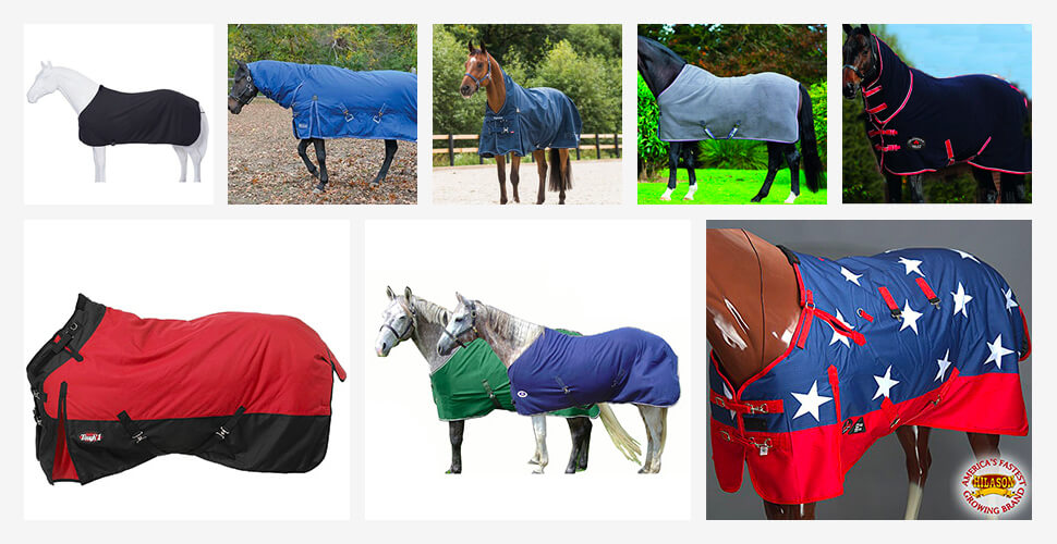 Top 10 Best Horse Blankets in 2018 Reviews