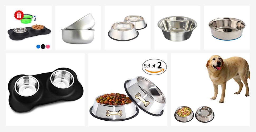 Top 10 Best Stainless Steel Dog Bowls in 2019 Reviews