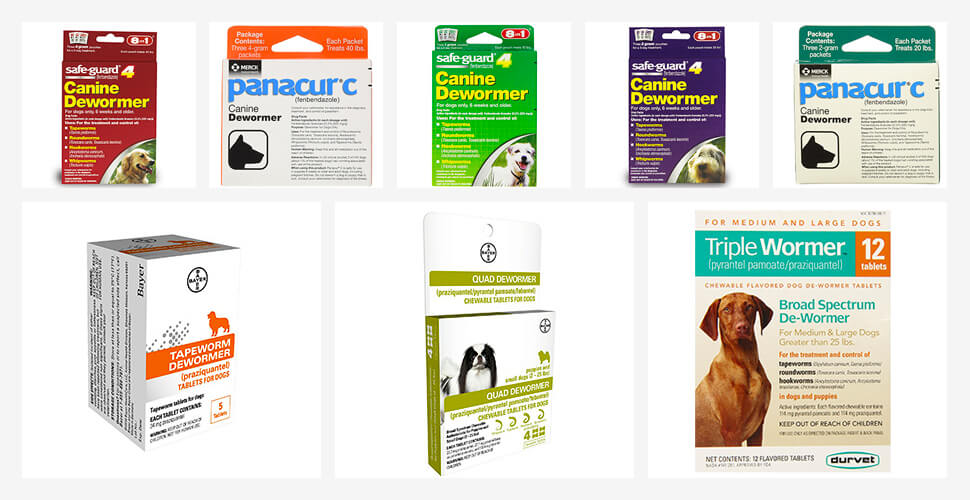 Best Dog Wormers