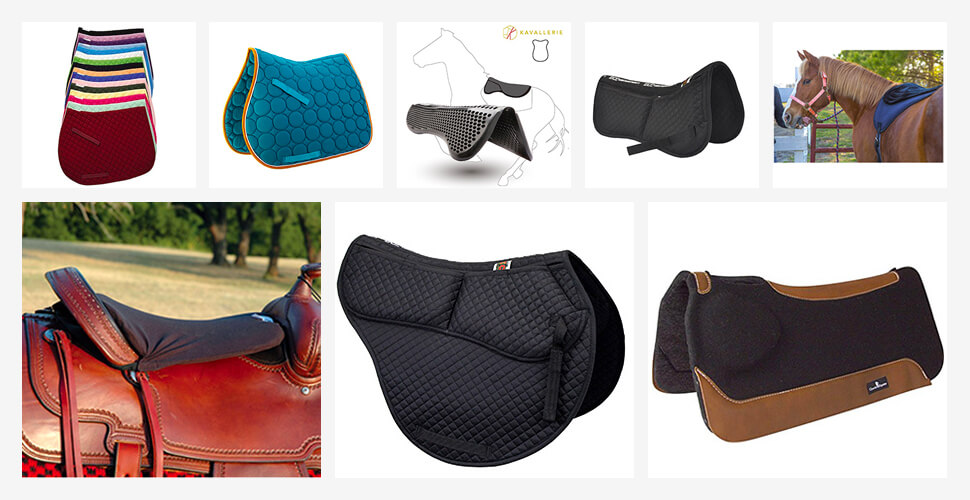 Best Horse Saddle Pads
