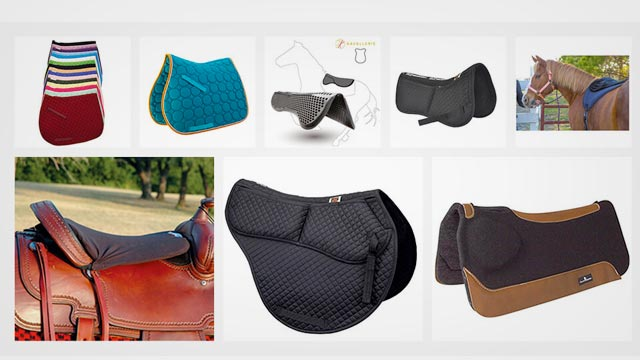 The Best Horse Saddle Pad in 2019 Reviews & Buyer's Guide