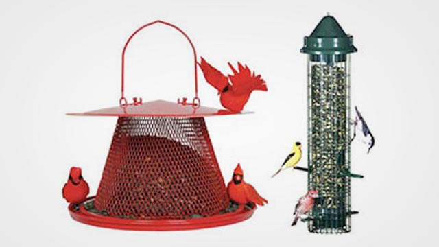 Top 10 Best Bird Feeder for Cardinals in 2019 Reviews