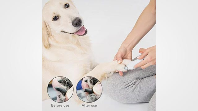 10 Best Dog Nail Grinders in 2019 Reviews