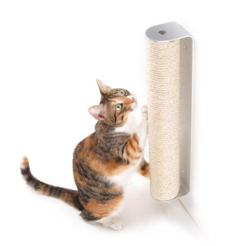 Four claws wall mounted scratching post