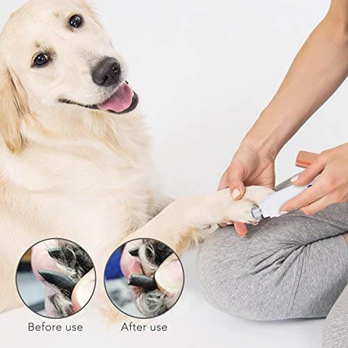 10 Best Dog Nail Grinders Reviews of 2019