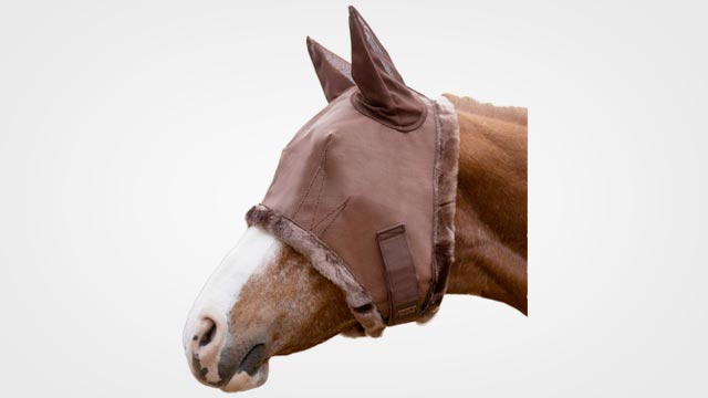 Best Horse Fly Control Mask in 2019: Reviews and Buying Guide